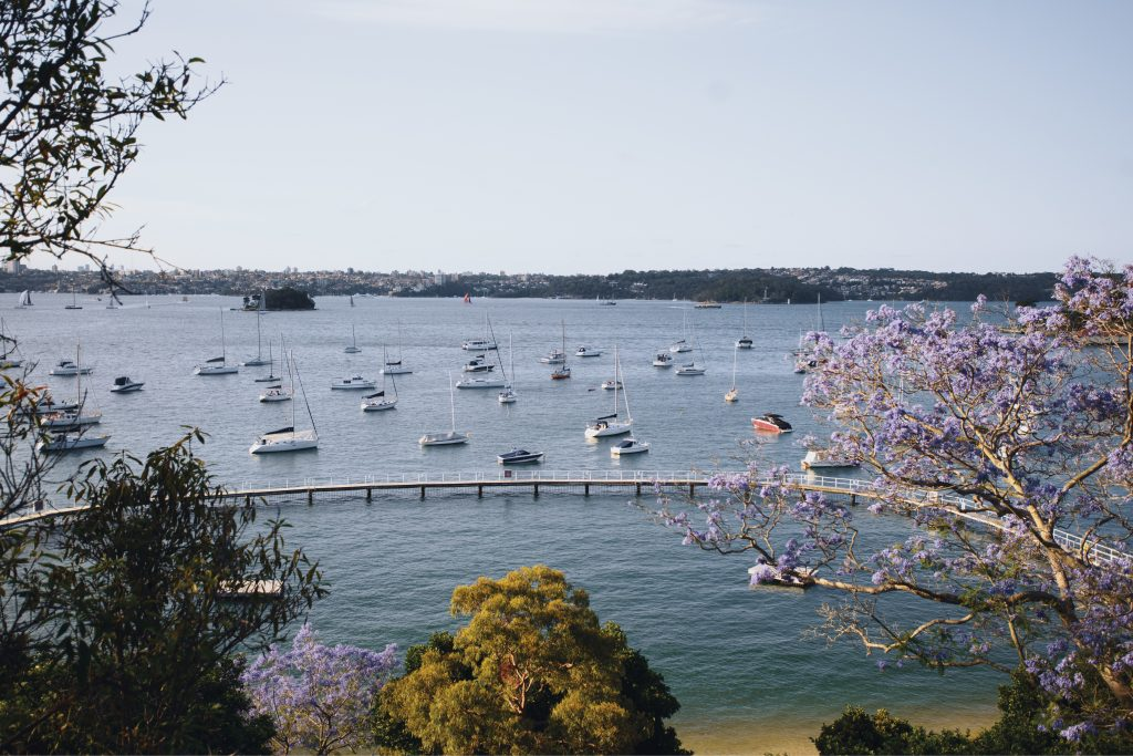 Looking down over Sydney harbour pool Murray Rose